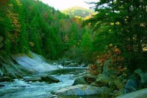 Hiking the Trails in Wilson Creek